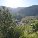 Casa Montejunto,  Pereiro