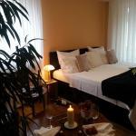 Hotel Pictures: Hotel Zum Berggarten, Kassel