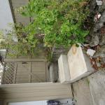 HLB Deluxe Garden Apartments, Port Alberni