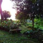 Hotel Pictures: Bella Vista Lodge, Dominical