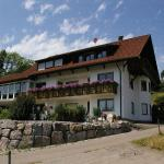 Hotel Pictures: Ferienwohnung Dietsche, Dachsberg im Schwarzwald