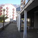 Apartment Nedovic, Budva