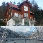 Hotel Pictures: Ferienhaus Traumblick, Hornberg