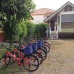 The Banana Cabins, Suratthani