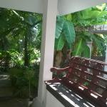 Coconut Grove, Cochin