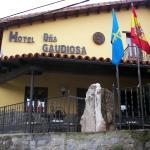 Hotel Pictures: Hotel Doña Gaudiosa, Pola de Lena