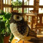 Hotel Pictures: Hotelapartamentos Torres, Selorio
