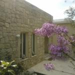 Hotel Pictures: Villa Koumneni, Pano Akourdalia
