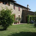 Casa Verde, Torgiano