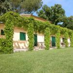 Holiday Home Il Frantoio, Torgiano