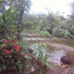 Ecoparque Agua Selva, Malpasito