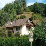 Hotel Pictures: Haus Weiss, Oberwolfach