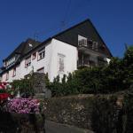 Hotel Pictures: Weingut Stiftshof, Enkirch