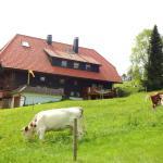 Hotel Pictures: Haus Winterberg, Schonach