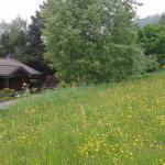 Woodland Lodge Winterberg, Winterberg