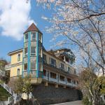 Dream Forest Villa, Renai