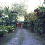 Hotel Pictures: Casa Tranquilo Home, Cahuita