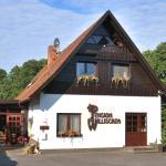 Hotel Pictures: Pension Willischza, Burg