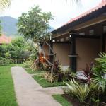 Pande Guest House, Pemuteran