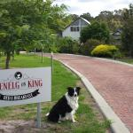 Hotellikuvia: Glenelg on King Bed & Breakfast, Willyung