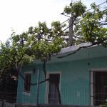 Φωτογραφίες: Kenos Hostel, Σαράντα