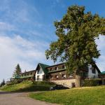 Hotel Pictures: Penzion Pohlednička, Benecko