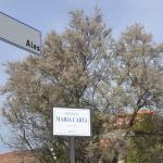 Appartamento Cervi,  Alghero
