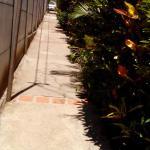 Hotel Pictures: Casa El Viajero, San José