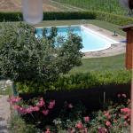 Azienda Agrituristica Le Bucoliche, Osimo