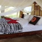 Serengeti Acacia Camps, Banagi