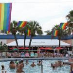 Flamingo Resort - Gay Resort, St Petersburg
