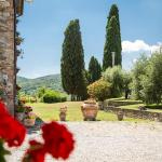 Agriturismo Spazzavento,  Palazzone