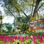 Baan Pai Riverside Resort, Pai