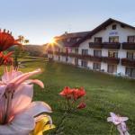 Hotel Pictures: Urlaubshotel Binder, Büchlberg