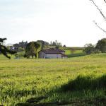 Il Cascinotto, Casale Monferrato