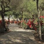 Hotel Pictures: Villa Domingo, Santa Margalida