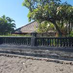 Villa Branie,  Lovina