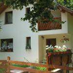 Casa de vacanta Mogosa,  Baia-Sprie