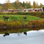 Klarälvens Camping,  Stöllet
