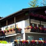 Hotel Ai Pini, Vigo di Fassa