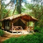 Migunga Tented Camp,  Mto wa Mbu
