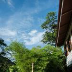 Penang Audi GuestHouse, Balik Pulau