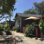 Andrea's Hidden Cottage, Sonoma