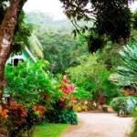 Coffeeriver Cottages, Marigot
