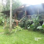 Hotel Pictures: La Perla de la Selva Lodge, Saltos del Moconá