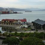 Belvedere,  Wellington