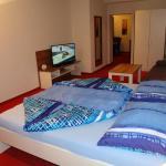 Hotelbilleder: Hotel Garni Daniela Urich, Schwanenstadt