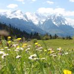 Hotel Pictures: Apartment Zugspitz, Farchant