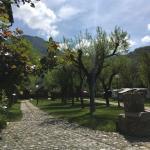 Hotel Pictures: Camping Boneta, Barruera
