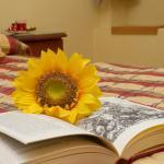 Hotel Pictures: Hostal Siete Picos, El Espinar